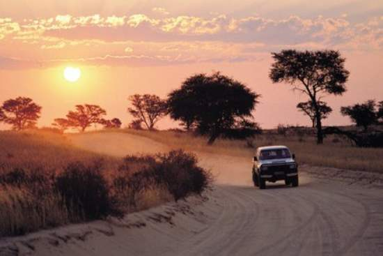 Top 5 African Safari Driving Routes