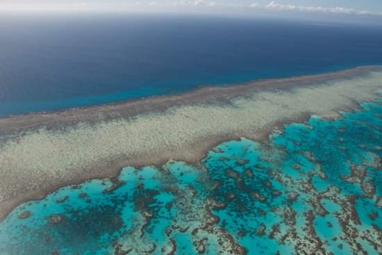 Great Barrier Reef Travel Guide - A Trip of a Lifetime